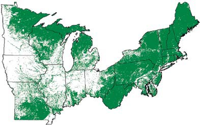 NAASF Northeastern Forests - Northeastern usa map